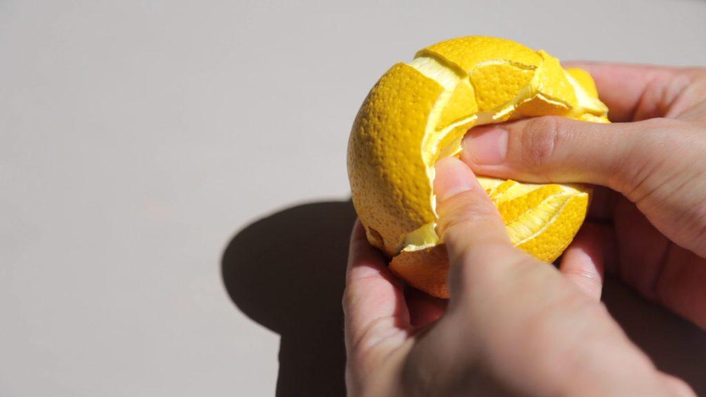 Peace Lemon by Sayaka Katsumoto